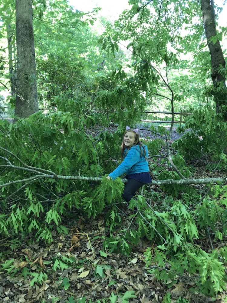 Child having fun on a fallen tree